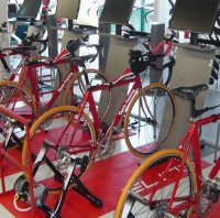 REALPOWER Cyclo Training Gym